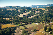 Evening Land's Occidental, Carl Myers, and Two Daughters vineyards in close proximity to the coast, Sonoma, California