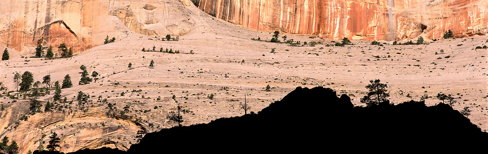 Rock face and shadow, Zion National Park, Utah, USA, 1997