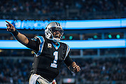January 3, 2016: Carolina Panthers vs Tampa Bay Buccaneers. Newton, Cam, celebrates a touchdown