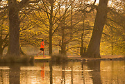 UNITED KINGDOM, London: 18 April 2018 A jogger makes his way through the tress of Richmond Park this morning. Londoners will be enjoying the weather today as temperatures are set to reach a high of 25 degrees Celsius in the capital. Rick Findler / Story Picture Agency