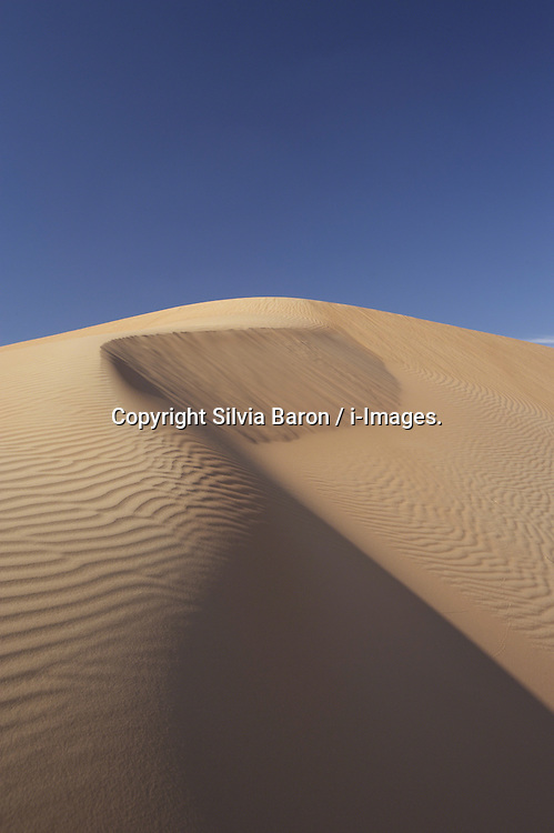 Sand dune, UAE, December 29, 2007. Photo by Silvia Baron / i-Images.