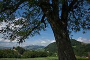 Vue sur la Gruyère et le Mont-Gibloux depuis La Roche. © Romano P. Riedo