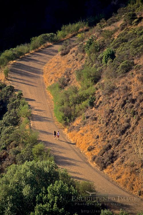 Hikers / Runners on trail (Fire road) in Tilden Regional Park, Berkeley Hills, CALIFORNIA