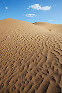 Image of Sahara desert sand dunes with cloudy blue sky at Erg Lihoudi, M'hamid, Morocco.