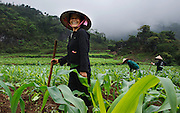 A corn farmer near Meo Vac, Vietnam.