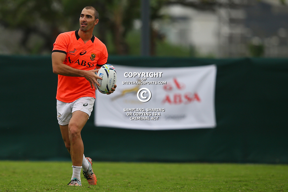 DURBAN, SOUTH AFRICA - SEPTEMBER 01: Ruan Pienaar during the South African national rugby team training session at Peoples Park on September 01, 2015 in Durban, South Africa. (Photo by Steve Haag/Gallo Images)