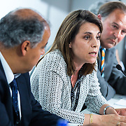 20160616 - Brussels , Belgium - 2016 June 16th - European Development Days - Investing in African fragile states - Who should adapt , investors or countries? - Caroline Sorlin , General Manager of Bel Access , Bel Group © European Union