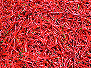Detail of Chillies, Ningxia Province, China.