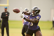 Day 13 of Ravens training camp back outside under grey skies on Wednesday morning at the Under Armour Performance Center in Owings Mills.