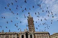 Basilica di Santa Maria Maggiore, volo di piccioni