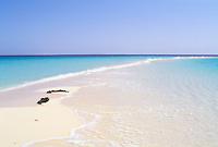 Erythree, archipel des Dahlak, ile de Madote // Madote island, Dahlak archipelago, Eritrea