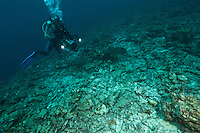 Diver with a video camera filming a reef destroyed by fish bombing, a highly destructive fishing practice, Biak, West Papua, Indonesia.
