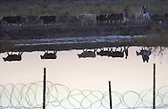 BARBED WIRE.As night falls in central Iraq, a group of Iraqi farmers move their cattle past a well guarded watering hole next to a Coalition refueling point along Main Supply Route Tampa south of Baghdad. The small base is surrounded by concentina wire to protect the soldiers from attack.