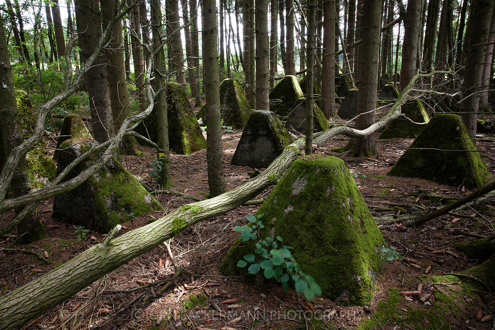 tank traps of the Siegfried line south of Aachen, North Rhine-Westphalia, Germany.<br /> <br /> Panzersperren des Westwall suedlich von Aachen, Nordrhein-Westfalen, Deutschland.