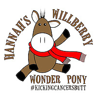 Willberry Wonder Pony