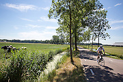 In Zeist rijdt een man op een racefiets langs de weilanden.<br /> <br /> In Zeist a man cycles on a road bike near the pastures.