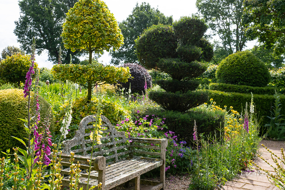 A Lutyens bench surrounded by digitalis and topiary in the Laskett Gardens, Much Birch, Herefordshire, UK