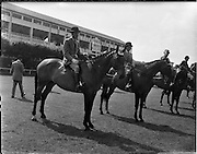 02/08/1960<br /> 08/02/1960<br /> 02 August 1960<br /> R.D.S Horse Show Dublin (Tuesday). &quot;Investment&quot; a 7 year-old Hunter Mare owned by Mr E.W. McMechan, Rose Lodge, Belsize Road, Lisburn, Co. Antrim and ridden by William McCully, Newtownards, won Class 17 for Hunter Mares up to 13st. to 14st. at the Dublin Horse Show.