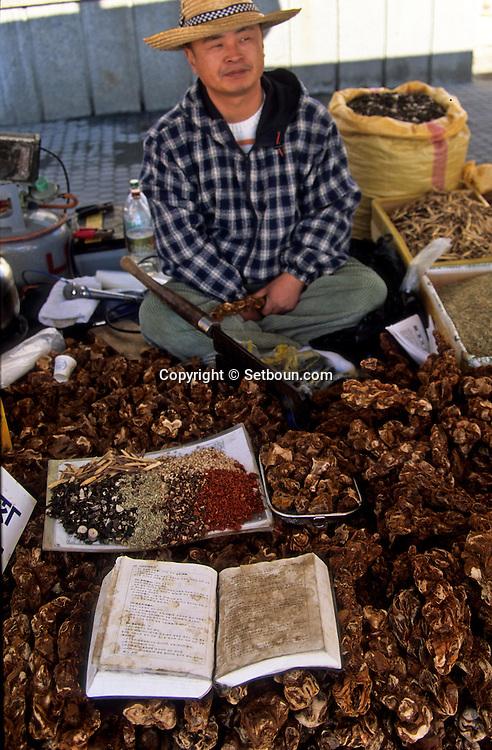 traditional pharmacy and chinese medecine in  Namwan  Korea   pharmacie traditionnelle sur le marche de  Namwan  coree  ///R20134/    L0006876  /  R20134  /  P105115///Andouillers de cerf, écailles de pangolin, champignons de longue vie et herbes des montagnes indispensables à la pharmacopée traditionnelle sont vendus au marché de Namwon, dans la province du Jeollabuk-do, au nord des Monts-Jiri.