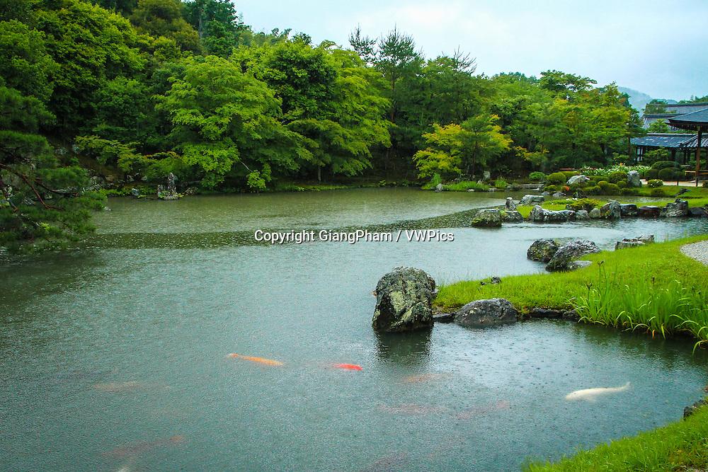 A lake in Zen Garden, in Kyoto Prefectures, Japan