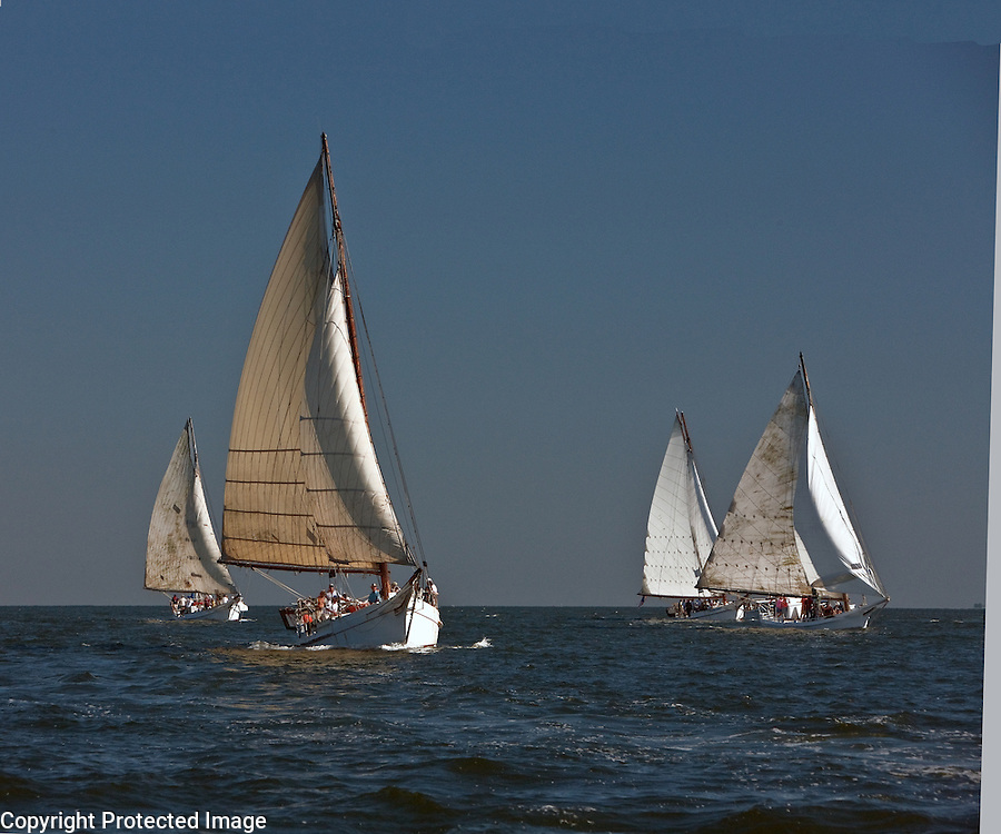 Skipjack Racing on the Chesapeake