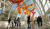 Seattle, Washington- October 1, 2014: The Glasshouse at Chihuly Garden and Glass. The 100-foot long sculpture is one of Chihuly's largest suspended works. CREDIT: Chris Carmichael for the New York Times