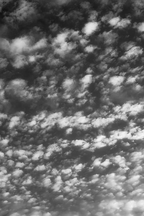 Alto cumulus clouds, Angus