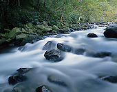 Large Format Photos, Hawaii