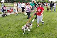 Sarah Horn of Tipp City and her 11 year old 'mutt' Cossette lead a mini-group of walkers during the Humane Society of Greater Dayton's Furry Skurry at Miami Valley Hospital South in Centerville, Saturday, May 12, 2012.