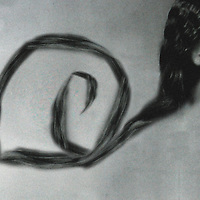 Conceptual image of young female head with long curling hair