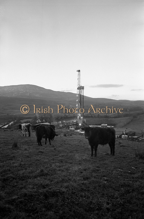 02/02/1963<br /> 02/02/1963<br /> 02 February 1963<br /> Ambassador Oil drilling site, Glengevlin, Dowra, Co. Cavan. An area of contrasts as hardy mountain cattle are attracted by the brilliance of lights on the ever pulsating oil drill. (original caption)