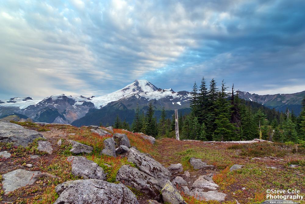 Cougar Divide - Mount Baker Wilderness