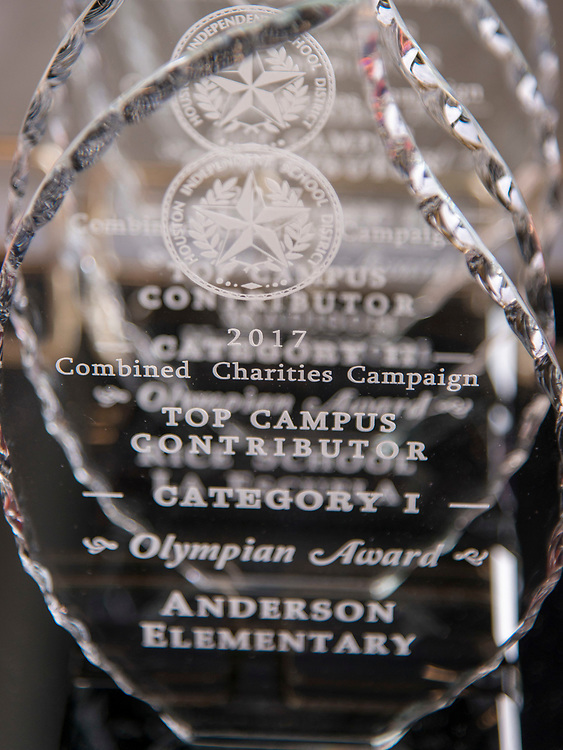 Combined Charities awards luncheon at Delmar Fieldhouse, March 7, 2017.