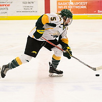 3rd year forward Jaycee Magwood (5) of the Regina Cougars in action during the Women's Hockey home game on December 1 at Co-operators arena. Credit: Arthur Ward/Arthur Images
