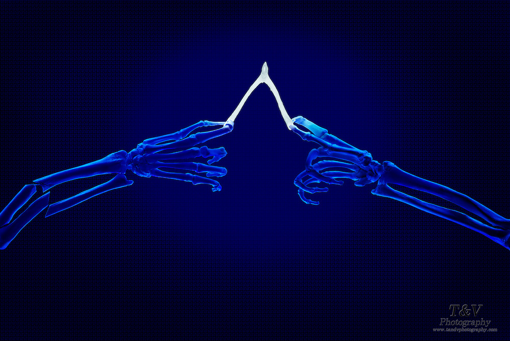 A skeleton arm breaks as it pulls on a wishbone against an opposing skeleton arm. Blacklight