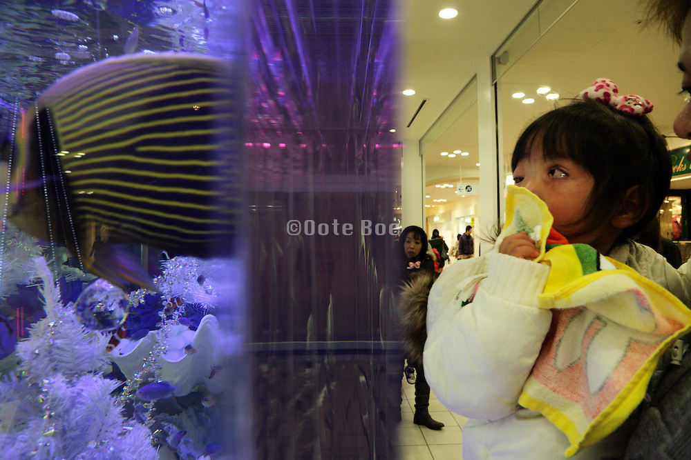 Asian child looking at tropical fish in a large glass aquarium in a shopping mall Japan