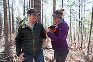 Bear Habitat research for an Oklahoma State University graduate student