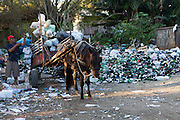 A man loading up his horse and cart at the recycling centre just outside Porte Alegre, Brazil. <br /> <br /> Cirandar is working in partnership with  C&A and C&A Instituto to implement a network of Community Libraries in eight communities of Porto Alegre.