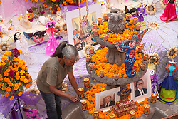 North America, Mexico, San Miguel de Allende, woman lighting candles at altar for Day of the Dead celebration, also known as Dios de los Muertos.  Mexicans celebrate the Day of the Dead on November 1st and 2nd in connection with the Catholic holy days of All Saints' Day and All Souls' Day.  MR, PR