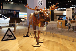 09 February 2017: Volvos Gustaf the Moose<br /> <br /> First staged in 1901, the Chicago Auto Show is the largest auto show in North America and has been held more times than any other auto exposition on the continent.  It has been  presented by the Chicago Automobile Trade Association (CATA) since 1935.  It is held at McCormick Place, Chicago Illinois<br /> #CAS17