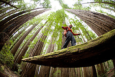 National Parks Photos -  Galleries - stock photos, images, photography