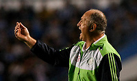 20120527: PORTO ALEGRE, RS, BRAZIL - Coach Luiz Felipe Scolari (Felipao) of  S.E. Palmeiras during Palmeiras Vs Gremio FPA team match for Brazilian Championship. <br />
