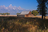 A old historic barn on the former Moulton Ranch.  Grand Teton National Park, Wyoming, USA.