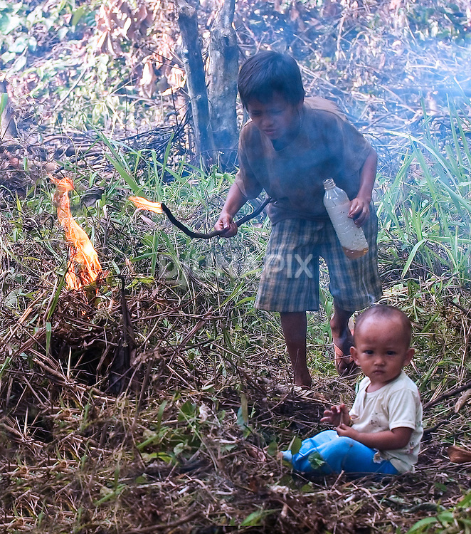 Kids in Borneo's Mahakam River basin are taught slash and burn agriculture at a very young age.