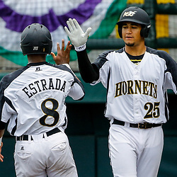 Alabama State outfielder Joseph Estrada (8) celebrates with infielder Ray Hernandez (25) after scoring against the Texas Southern during the bottom of the fourth inning of the SWAC baseball championship final in New Orleans, La. Sunday, May 21, 2017.