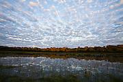 Aquidauana_MS, Brasil....Paisagem com rio da fazenda Rio Negro no Pantanal...A landscape with river in the Rio Negro farm in Pantanal...Foto: JOAO MARCOS ROSA / NITRO