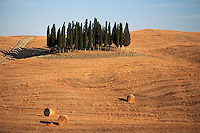 August 1997, Tuscany, Italy --- Cypress Trees and Hay Bales in Field --- Image by © Owen Franken/CORBIS