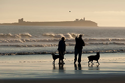 © Licensed to London News Pictures. 12/03/2012. Bamburgh, UK. Dog walkers throwing a ball for their dog on Bamburgh Beech at sunrise in Northumberland, North East England on March 12th, 2012. Photo credit : Ben Cawthra/LNP.