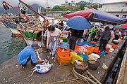 Vendors buy fish from fishermen in Daxi harbor, Taiwan.