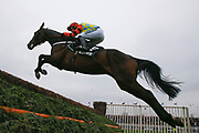 Winner Might Bite and Nico de Boinville clear the last fence inThe Betway Bowl Steeple Chase Race at Aintree, Liverpool, United Kingdom on 12 April 2018. Picture by Craig Galloway.